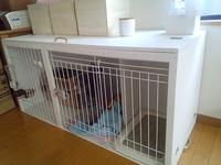 クローゼット内収納 犬用ケージ DIY